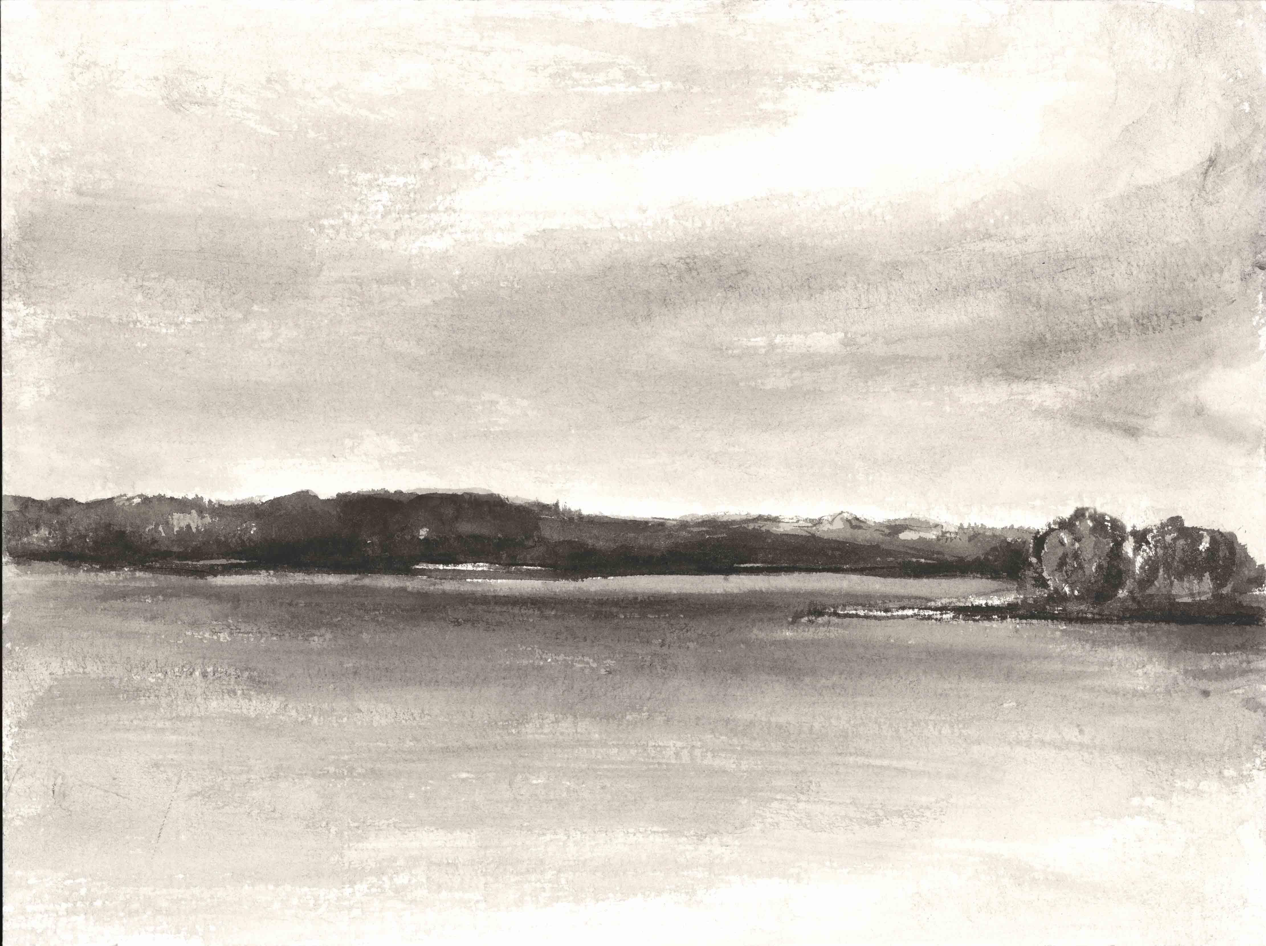 Narew River, 30x40cm, ink, paper, 2017