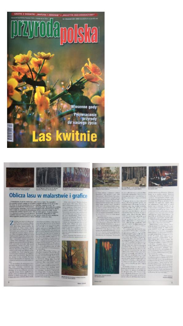 Images of forest in painting and graphic, magazine Przyroda Polska (Polish nature), 2021