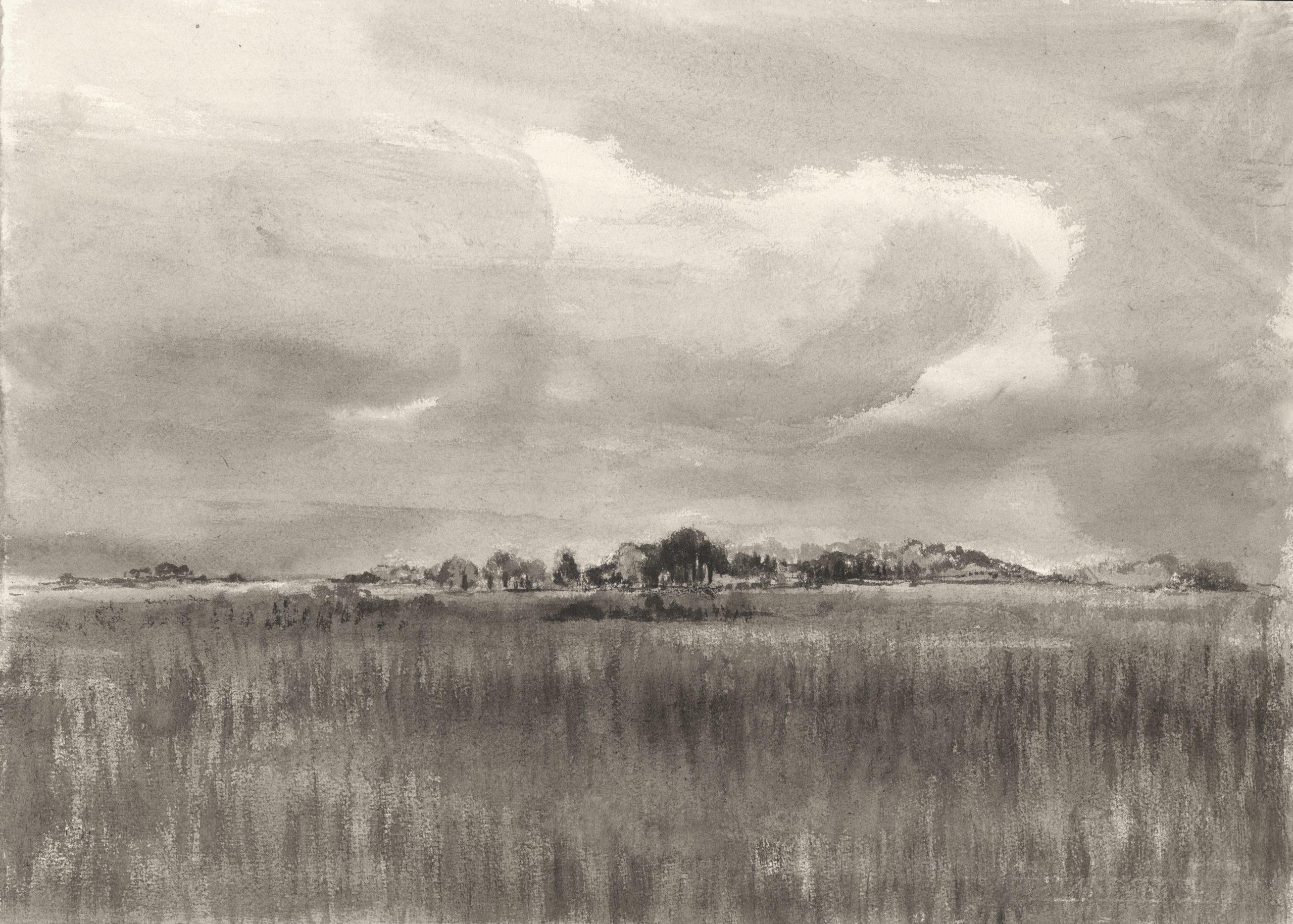 Mazovia, 40x50cm, ink, paper, 2017