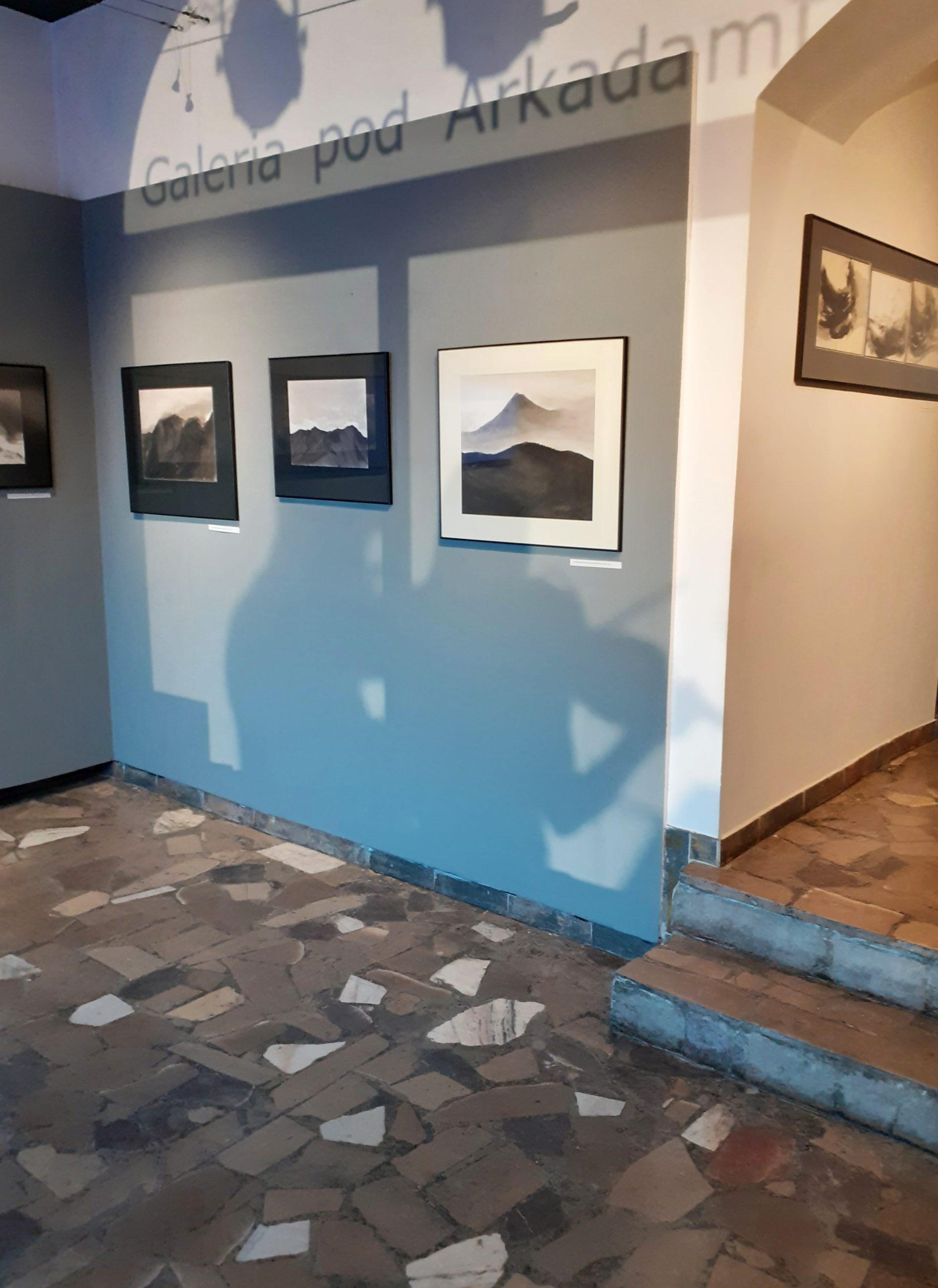 Exhibiton, Galeria pod Arkadami, Miejski Dom Kultury, Łomża, 2021